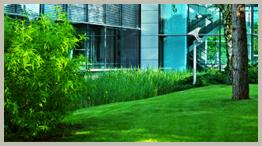 Lawn Amp Landscaping Maintenance Asc Lawn Services Tulsa Ok